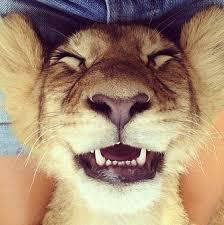 Selfie cute
